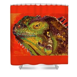 Iggy Shower Curtain by Cynthia Powell