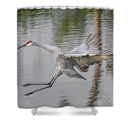 Ike The Crane's Grouchy Day Shower Curtain