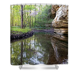 Illinois Canyon In Spring Shower Curtain