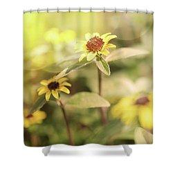 Illuminated Zinnia Shower Curtain by AugenWerk Susann Serfezi