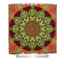 Illumination Shower Curtain by Bell And Todd