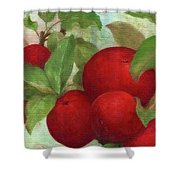 Illustrated Apples Shower Curtain