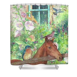 Illustrated Horse And Birds In Garden Shower Curtain