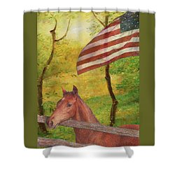 Illustrated Horse In Golden Meadow Shower Curtain