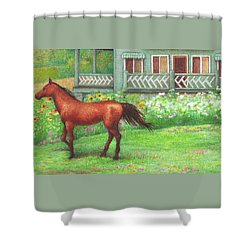 Illustrated Horse Summer Garden Shower Curtain