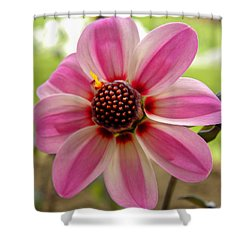 I'm Here To Brighten Your Day Shower Curtain by Jewels Blake Hamrick
