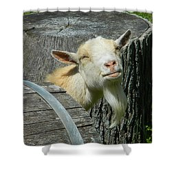 I'm Lucy - I Like You Shower Curtain by Emmy Marie Vickers