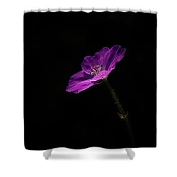I'm Pink Shower Curtain by Peter Scott