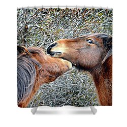 I'm The Boss Says Patricia Irene To April Star Shower Curtain