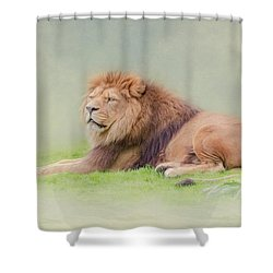 I'm The King Shower Curtain by Roy McPeak