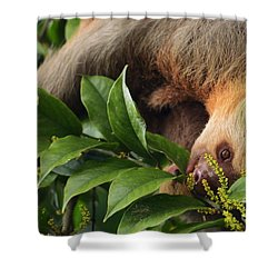 I'm Trying To Eat Here Shower Curtain by Pamela Blizzard