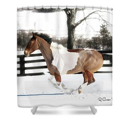 Image #3 Shower Curtain