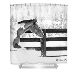 Image #4 Shower Curtain
