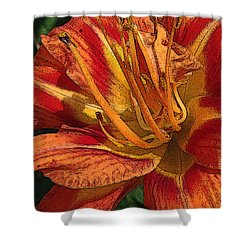 Images On The Mind Shower Curtain