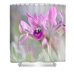 Shower Curtain featuring the photograph Imaginary Spring Time by Silke Brubaker