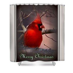 Img_3158-005 - Northern Cardinal Christmas Card Shower Curtain