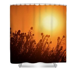 Impalila Island Sunset No. 3 Shower Curtain