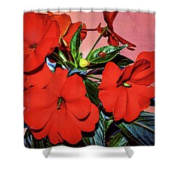Impatience With Ladybug Shower Curtain by Diane Schuster