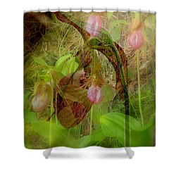 Imperiled Shower Curtain by Priscilla Richardson