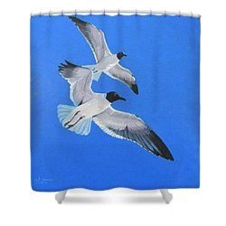 Impervious Shower Curtain
