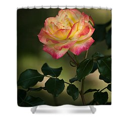 Imposing On Bloom Shower Curtain