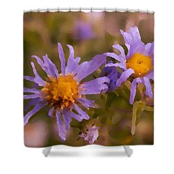 Impressionistic Asters Shower Curtain