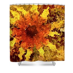 Impressionistic Petals Shower Curtain