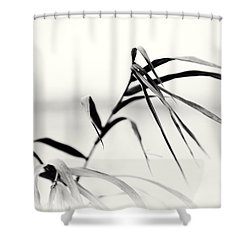Impressions Monochromatic Shower Curtain