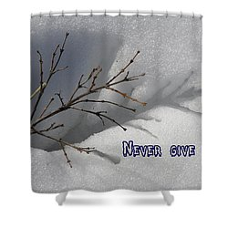Shower Curtain featuring the photograph Impressions Never Give Up by DeeLon Merritt