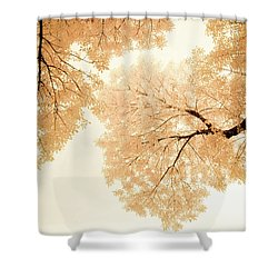 Impressions Of October Shower Curtain by John De Bord