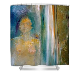 In A Dream Shower Curtain