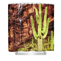 Shower Curtain featuring the photograph In A Dry And Thirsty Land by Rick Furmanek