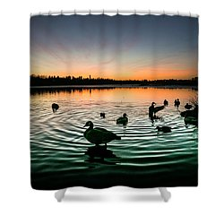 In A Flap Shower Curtain