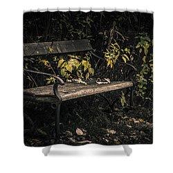 In A Forgotten Corner Shower Curtain