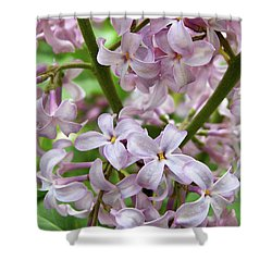 Sea Of Lilacs Shower Curtain
