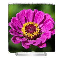In A Summer Mood Shower Curtain