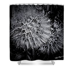 In Abstract Shower Curtain