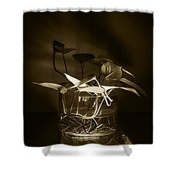 In Brown Light Shower Curtain