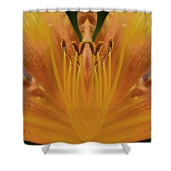 Shower Curtain featuring the photograph In Close Mandala by Lyle Crump