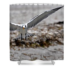 In Coming Shower Curtain