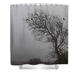 Shower Curtain featuring the photograph In Days Of Silence by Odd Jeppesen