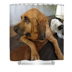 In Deep Thought Shower Curtain by Val Oconnor