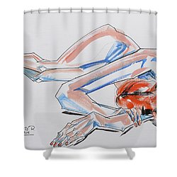 In Dreams...don T Wake Me Up Shower Curtain