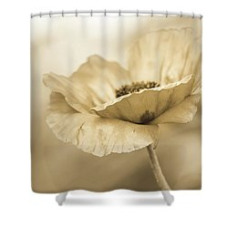 In Due Diligence  Shower Curtain