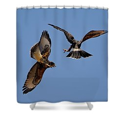 Shower Curtain featuring the photograph In Flight Challenge H43 by Mark Myhaver