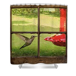 In Flight Shower Curtain by Denis Lemay