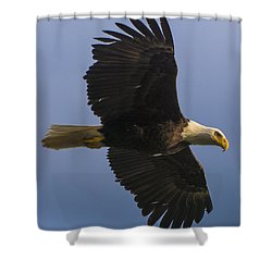 Shower Curtain featuring the photograph In Flight by Gary Lengyel