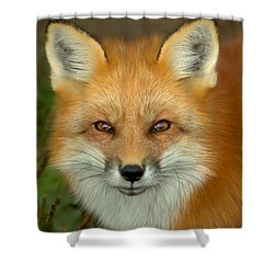 In Focus Shower Curtain