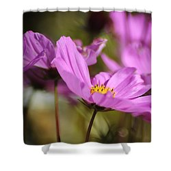 In Full Bloom Shower Curtain by Sheila Ping