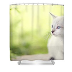 In Her Eyes Shower Curtain by Amy Tyler